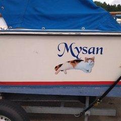 mysan1960